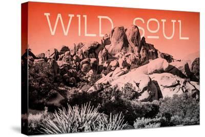 Ombre Adventure II Wild Soul-Elizabeth Urquhart-Stretched Canvas Print