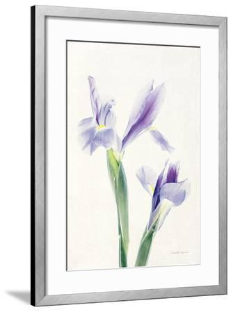 Light and Bright Floral III-Elizabeth Urquhart-Framed Photo