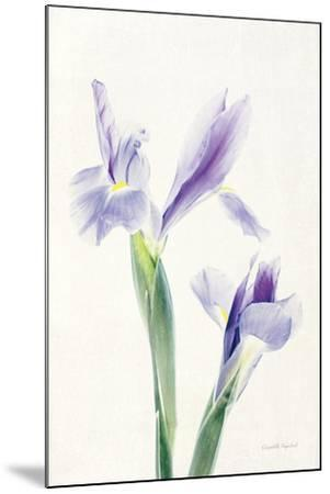 Light and Bright Floral III-Elizabeth Urquhart-Mounted Photo
