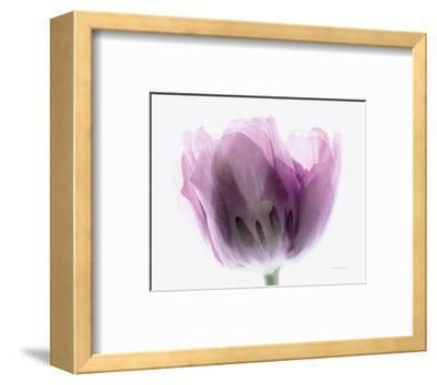 Inside Out I-Elizabeth Urquhart-Framed Photo