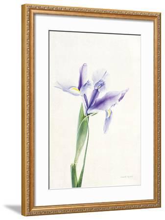 Light and Bright Floral IV-Elizabeth Urquhart-Framed Photo