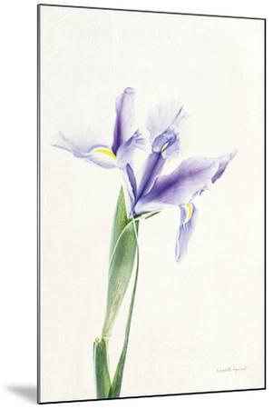 Light and Bright Floral IV-Elizabeth Urquhart-Mounted Photo