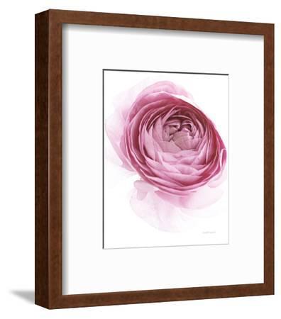 Pink Lady IV-Elizabeth Urquhart-Framed Photo