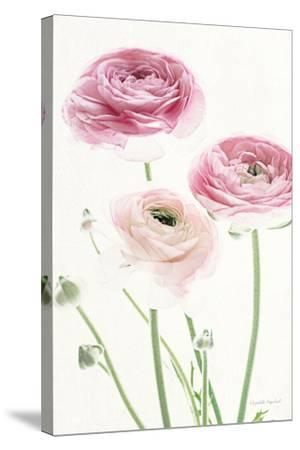 Light and Bright Floral VI-Elizabeth Urquhart-Stretched Canvas Print