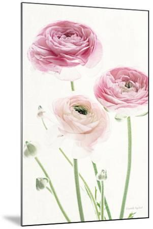 Light and Bright Floral VI-Elizabeth Urquhart-Mounted Photo