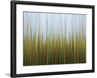 Seagrass Canvas-Katherine Gendreau-Framed Photo
