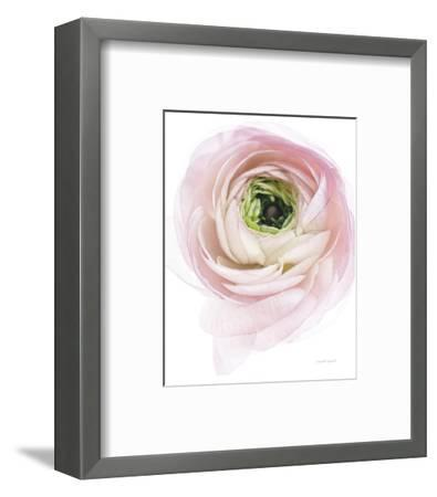 Pink Lady II-Elizabeth Urquhart-Framed Photo