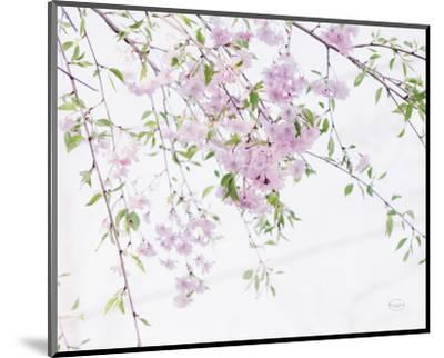 Spring Branches II-Brookview Studio-Mounted Photo