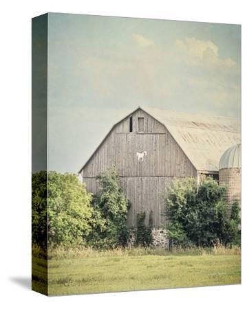 Late Summer Barn II Crop-Elizabeth Urquhart-Stretched Canvas Print