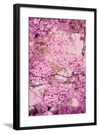 Pink On Pink IV-Elizabeth Urquhart-Framed Photo