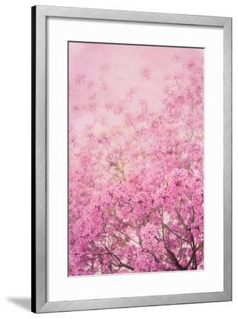 Pink On Pink I-Elizabeth Urquhart-Framed Photo