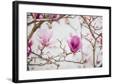 Spring is In the Air II-Elizabeth Urquhart-Framed Photo