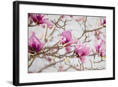 Spring is In the Air IV-Elizabeth Urquhart-Framed Photo