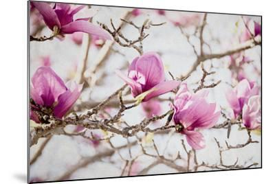 Spring is In the Air IV-Elizabeth Urquhart-Mounted Photo