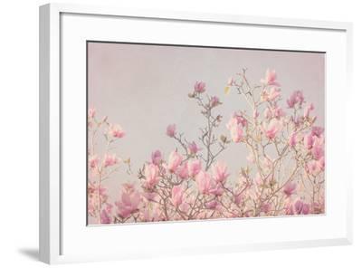 Pink Tree Tops II-Elizabeth Urquhart-Framed Photo
