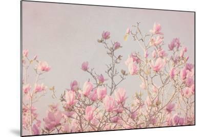 Pink Tree Tops II-Elizabeth Urquhart-Mounted Photo