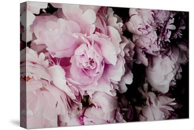 Peonies Galore I-Elizabeth Urquhart-Stretched Canvas Print