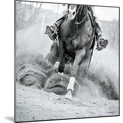 Reining In-Lisa Cueman-Mounted Photo