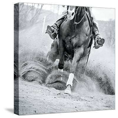 Reining In-Lisa Cueman-Stretched Canvas Print