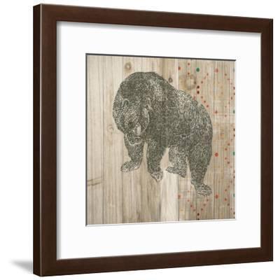 Natural History Lodge Southwest IV-Wild Apple Portfolio-Framed Art Print