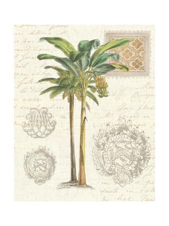 Vintage Palm Study I-Wild Apple Portfolio-Framed Art Print