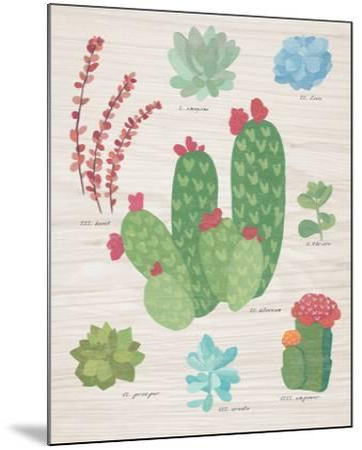Succulent Chart IV on Wood-Wild Apple Portfolio-Mounted Art Print