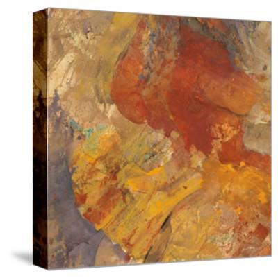 Canyon 3C-Albena Hristova-Stretched Canvas Print