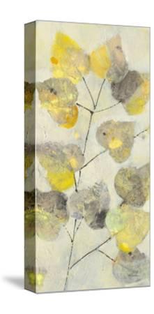 Aspen Branch I-Albena Hristova-Stretched Canvas Print