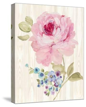 Driftwood Garden VI-Wild Apple Portfolio-Stretched Canvas Print