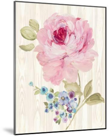 Driftwood Garden VI-Wild Apple Portfolio-Mounted Art Print