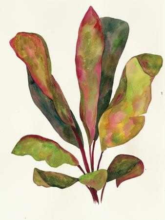 Harriets Elements 11-Wild Apple Portfolio-Framed Art Print