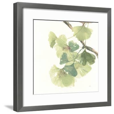 Gingko Leaves II on White-Chris Paschke-Framed Art Print