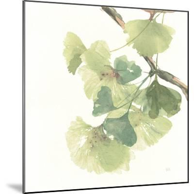 Gingko Leaves II on White-Chris Paschke-Mounted Art Print