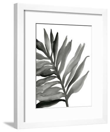 Tropical Palm III BW-Chris Paschke-Framed Art Print