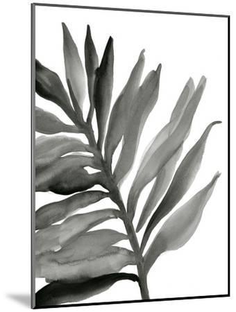 Tropical Palm III BW-Chris Paschke-Mounted Art Print