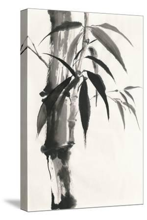 Sumi Bamboo-Chris Paschke-Stretched Canvas Print