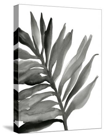 Tropical Palm III BW-Chris Paschke-Stretched Canvas Print