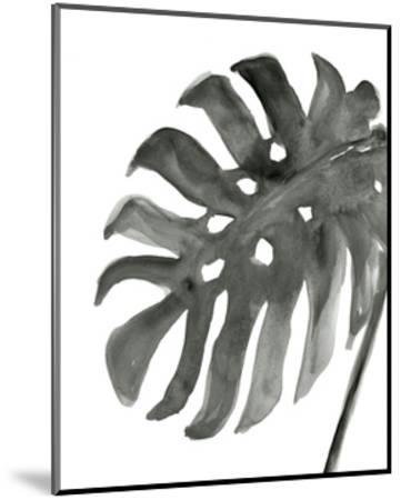Tropical Palm IV BW-Chris Paschke-Mounted Art Print