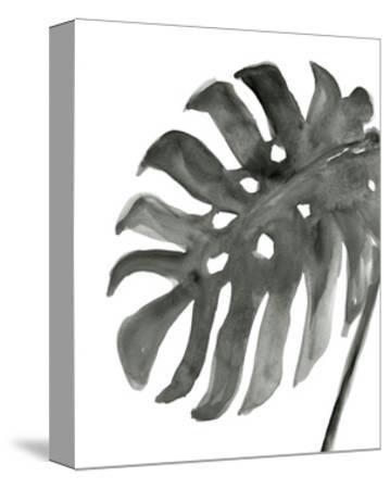 Tropical Palm IV BW-Chris Paschke-Stretched Canvas Print