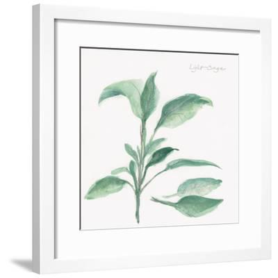 Sage II-Chris Paschke-Framed Art Print