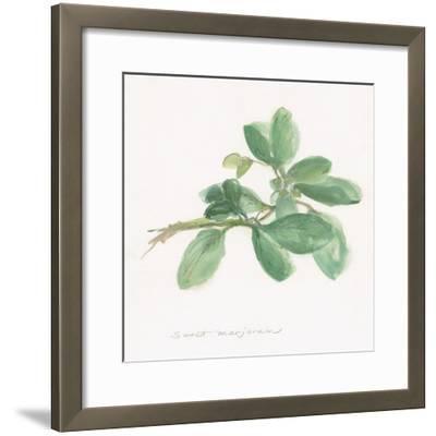 Sweet Marjoram-Chris Paschke-Framed Art Print