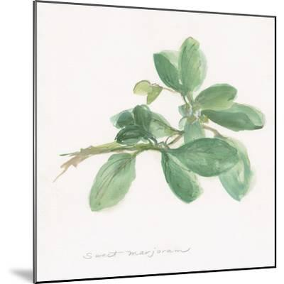 Sweet Marjoram-Chris Paschke-Mounted Art Print