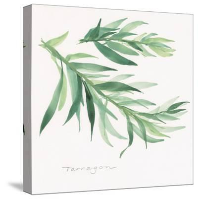 Tarragon-Chris Paschke-Stretched Canvas Print