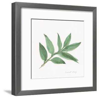 Sweet Bay-Chris Paschke-Framed Art Print