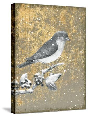 Winter Birds Bluebird Neutral-Beth Grove-Stretched Canvas Print