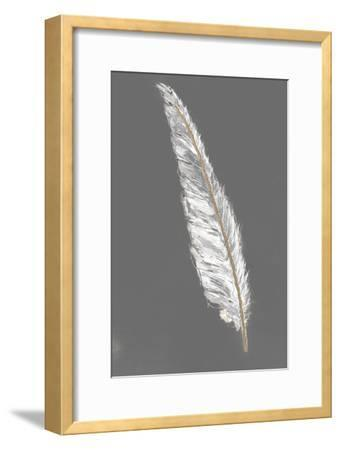 Gold Feathers VI on Grey-Chris Paschke-Framed Art Print