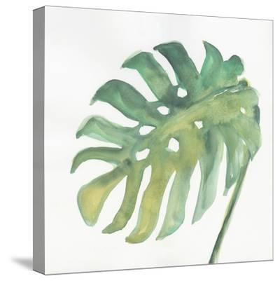 Tropical Palm IV-Chris Paschke-Stretched Canvas Print