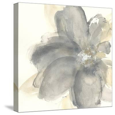 Floral Gray I-Chris Paschke-Stretched Canvas Print