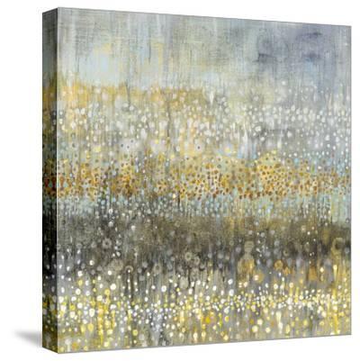 Rain Abstract IV-Danhui Nai-Stretched Canvas Print