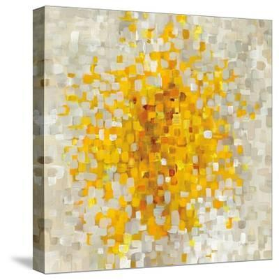 Summer Blocks-Danhui Nai-Stretched Canvas Print